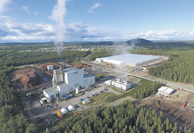 Comme à Chapais dans le Nord-du-Québec, Savoura se dit ouverte à établir d'autres partenariats avec des investisseurs ou des producteurs serricoles. Photo : Gracieuseté de Sagami/Savoura/Savoura bio
