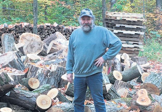 L'acériculteur Georges Paradis a dû abattre des centaines d'érables après le passage des chenilles de la livrée des forêts. Photo : Gracieuseté de Georges Paradis