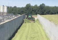 Il faut s'assurer d'avoir le bon poids tracteur pour bien compacter l'ensilage dans les bunkers. Photos: Martine Giguère/Agro-Bio Contrôle