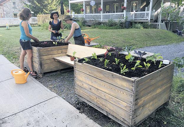 En plus des bacs nourriciers et des affiches, les installations construites par l'équipe de La Récolte des Générations incluaient un banc afin que les personnes de tous âges disposent d'un endroit pour se reposer et échanger. Photos : Gracieuseté de La Récolte des Générations