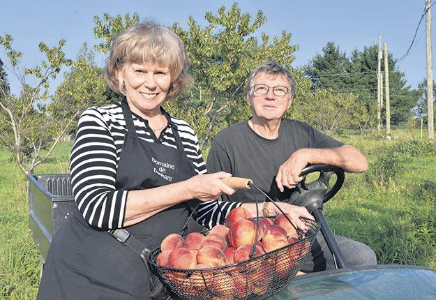 Les propriétaires du Domaine de Dunham, en Montérégie, Gisèle Larocque et Claude Girard, misent sur une offre diversifiée avec la culture de la pêche, de la poire et de la prune en plus de la pomiculture. Photos : David Riendeau