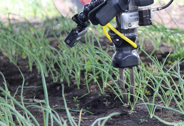 Le gouvernement investit 92,5 M$ pour stimuler les investissements agricoles en robotisation et automatisation pour répondre aux problèmes de main-d'œuvre dans les fermes du Québec. Crédit: David Riendeau/Archives TCN