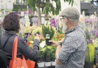 Pas moins de 3 000 personnes se sont inscrites à l'édition virtuelle de l'Expo Québec Vert. Photo : Gracieuseté de Québec Vert