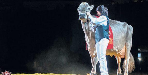 Remporter le titre de Grande championne au World Dairy Expo à deux reprises avec Fantasy a été un grand moment de fierté pour toute la famille.