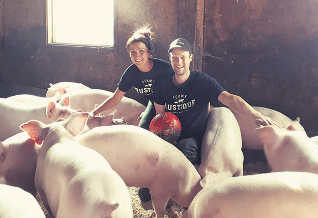 Élisabeth Grenier et Alexandre Landry aiment voir leurs cochons heureux. Il suffit d'une boule de quilles pour que la troupe porcine s'amuse. Photo : Gracieuseté de la Ferme Rustique