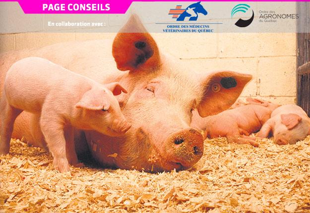 Le gaspillage de médicament entraîne une dépense inutile pour l'éleveur et prive les animaux traités d'une fraction de la dose thérapeutique, ce qui peut retarder leur guérison et diminuer leurs performances.