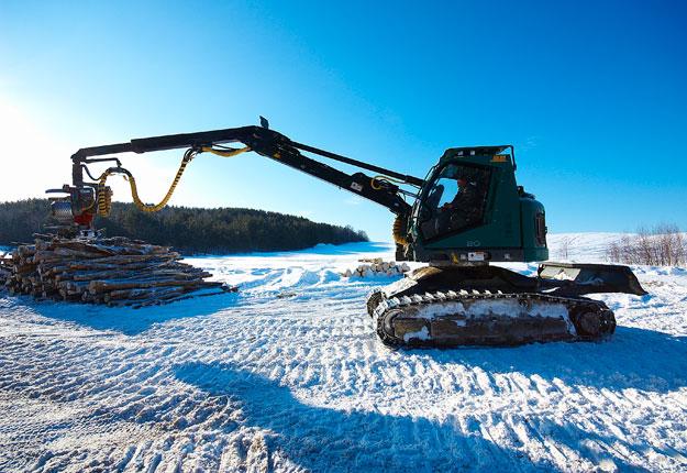 Le gouvernement québécois veut accroître la coupe d'arbres afin de produire 4,1 millions de mètres cubes de bois supplémentaires d'ici quatre ans. Photo : Martin Ménard / Archives TCN