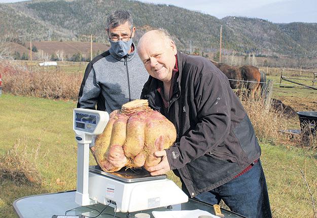Damien Allard et le plus gros de ses trois navets. Photo : Gilles Gagné