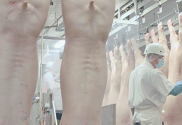 Selon l'agroéconomiste Anthony Lévesque, avec les conséquences entraînées par la COVID-19, la situation des producteurs porcins du Québec aurait été catastrophique sans la convention signée en avril 2019 et valide jusqu'en février 2022. Photo : Gracieuseté d'Olymel