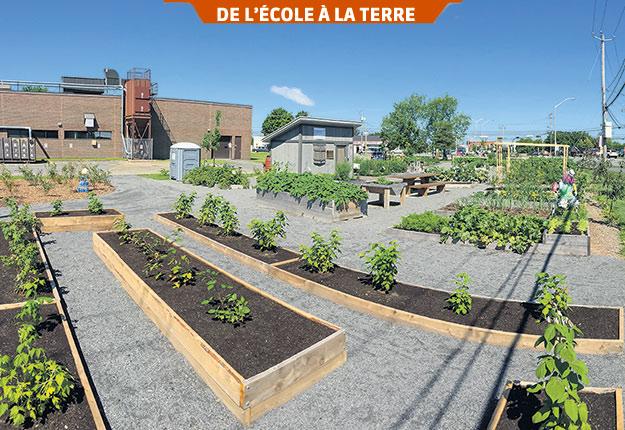 Le Jardin des rendez-vous à Victoriaville, un potager urbain collectif. Photo : Gracieuseté de la Ville de Victoriaville
