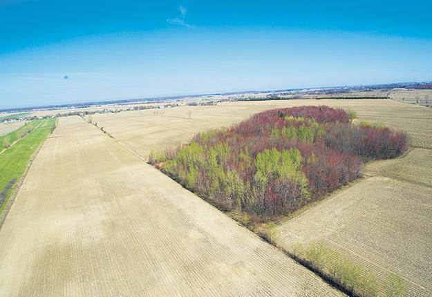 Dans certains cas, le morcellement de terre est maintenant permis sans autorisation de la CPTAQ. Photo : Martin Ménard / Archives TCN