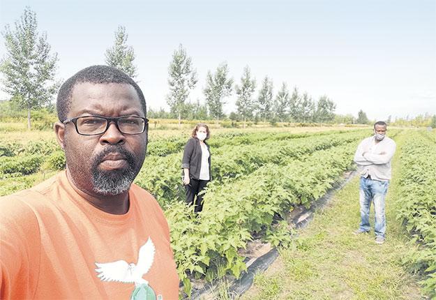 Le producteur maraîcher Papy Bulembi devant l'un de ses champs de légumes africains, à Notre-Dame-de-l'Île-Perrot, en Montérégie. Photo : Gracieuseté d'AgriTropiQ