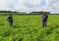 Les propriétaires de chaque ferme en vitrine ont été rencontrés par l'équipe du CETAB+ afin de mieux pouvoir les jumeler avec d'autres producteurs. Photo : CETAB+