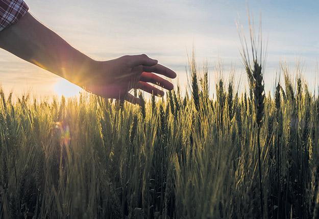 L'un des objectifs de l'étude est de permettre aux agriculteurs d'exprimer ce qu'ils ressentent par rapport aux différentes pressions qu'ils vivent et qui sont liées à leur genre. Photo : Shutterstock