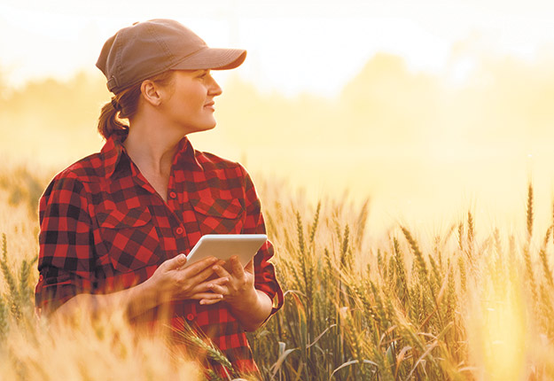 Photo : Shutterstock.com