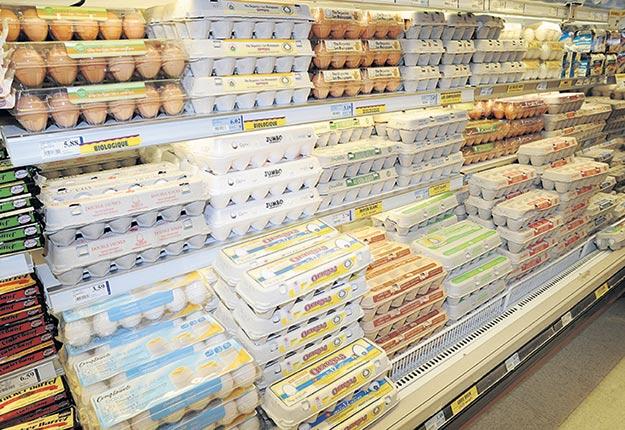 En 2019, 186 000 kg d'œufs bio ont été vendus comparativement à 84 000 kg en 2012. Photo : Archives/TCN