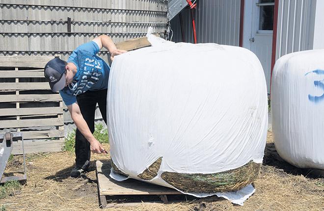 Le plastique d'ensilage est maintenant récupéré dans quatre MRC du Québec grâce aux projets pilotes en place. Photo : Gracieuseté d'AgriRECUP