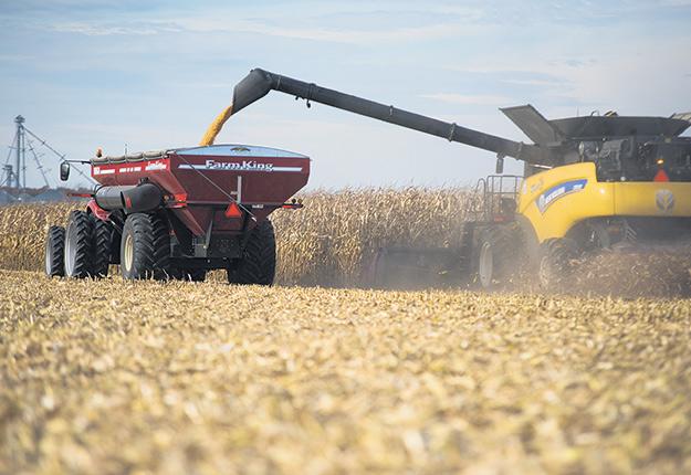 Le Québec s'illustre en matière de marge brute à l'hectare pour le maïs-grain, le soya et le canola, et ce, comparativement à l'Ontario et aux États-Unis. Photo : Martin Ménard/Archives TCN