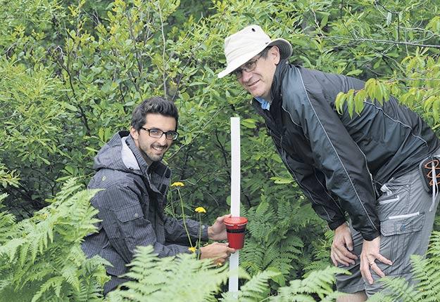 Le chercheur en bioclimatologie Gaétan Bourgeois (à droite) a développé avec son équipe un logiciel informatique qui permet aux agriculteurs de prendre des décisions plus avisées relativement aux impacts des changements climatiques sur différentes cultures. Photo : Gracieuseté de Gaétan Bourgeois
