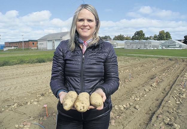 Les travaux de la bactériologiste moléculaire et chercheure Claudia Goyer sont orientés selon deux axes principaux: l'environnement et les pratiques de culture des pommes de terre, puis les variants naturellement plus résistants. Photo : Gracieuseté de Claudia Goyer