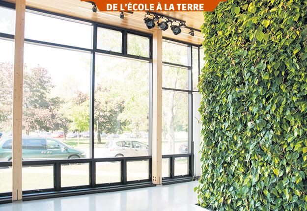 Au-delà de l'aspect ornemental, l'utilisation de plantes fait dorénavant partie des moyens concrets pour améliorer le cadre de vie et résoudre des problématiques de santé publique. Photo : Gracieuseté de Julie Vézina