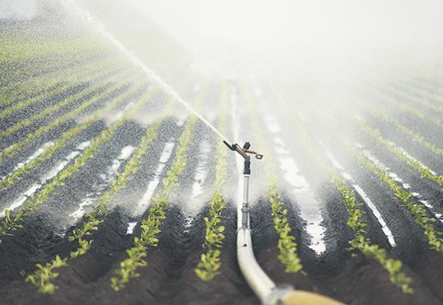 L'évolution du climat aura des impacts sur les besoins en eau des cultures, selon des prévisions effectuées par le Centre de recherche et de développement d'Agriculture et Agroalimentaire Canada. Photo : Martin Ménard/Archives TCN