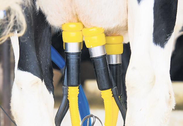 L'industrie laitière travaille à trouver des solutions de rechange pour les sous-produits à base d'huile de palme. Photo : Martin Ménard Archives/TCN