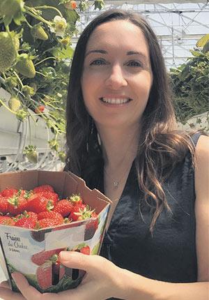 Miriam Fredette, de Côté Fraises à La Présentation, peine à répondre à la demande avec ses fraises en serre. Photo : Gracieuseté de Miriam Fredette