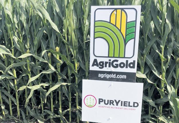 Agrocentre introduit le Puryield, une urée enrobée à dégagement contrôlé.