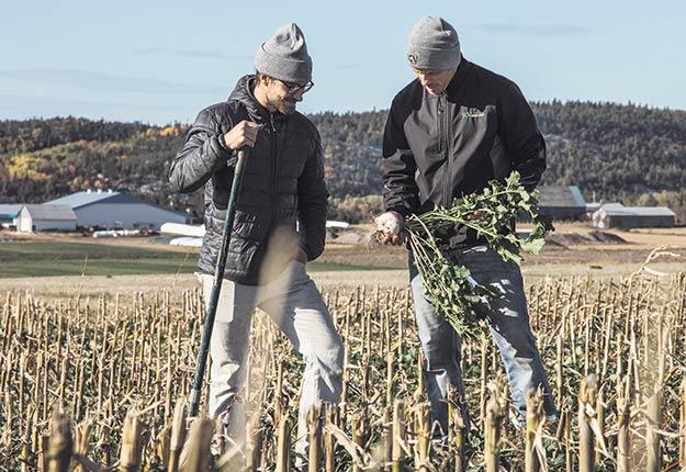 Selon l'agronome Louis Pérusse (à droite), qui accompagne avec son collègue Félix Gobeil des groupes de producteurs utilisant le semis direct sur couverture végétale permanente partout au Québec, le maintien d'une forte biomasse racinaire vivante assure le travail biologique des sols et une augmentation de sa fertilité. Photo : Gracieuseté de SCV Agrologie