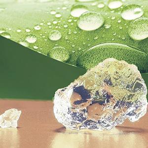 Le Stockosorb absorbera et stockera l'eau et les nutriments pendant la pluie pour les relâcher en période plus sèche.