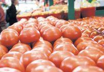 Tout le marché nord-américain est au ralenti depuis près de deux mois, puisque l'offre de tomates en épicerie surpasse la demande. Photo : Archives/TCN