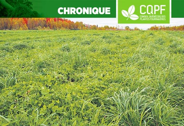 Les bases du succès pour des plantes abondantes et résilientes sont: un bon égouttement, une structure optimale et un pH adéquat. Photo : Archives/TCN