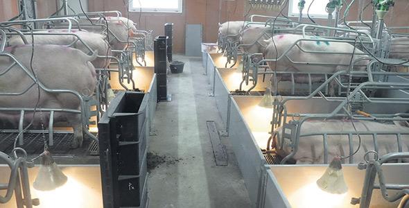 Avec la ventilation souterraine, l'effet de géothermie réchauffe l'air en hiver et le refroidit en été. Photo : Gracieuseté de Sébastien Turcotte