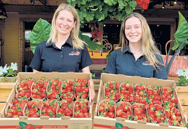 Francine Héroux et Maïka Lemire, de la Ferme horticole Gagnon à Trois-Rivières, ont ouvert leur kiosque de fraises le 26 mai. Photo : Gracieuseté de David Lemire