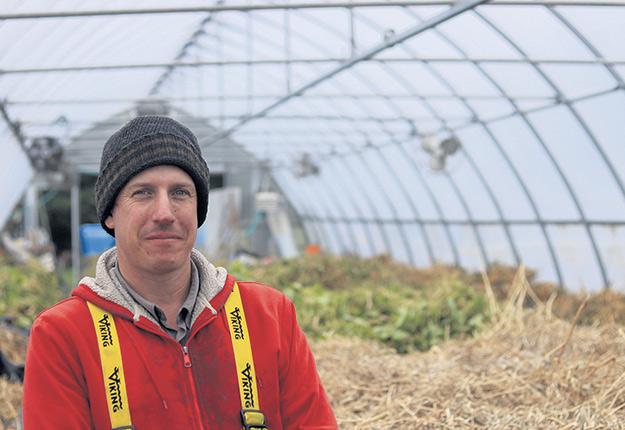 Voilà déjà plus de 20ans que Daniel Brisebois a commencé à récolter et à commercialiser des semences biologiques. Photo : Gracieuseté de la Ferme Coopérative Tourne-Sol