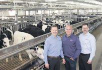 Les frères Fabien, Donald et Alexandre Fontaine détiennent 36 entreprises d'élevage, d'abattage et de transformation de viande en Amérique du Nord, notamment Délimax et Montpak. Photo : Gracieuseté de Préval AG