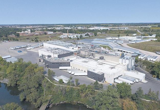 L'usine de Guelph, qui dessert des producteurs de tout l'est du Canada, transforme environ 10000bovins par semaine à l'heure actuelle. Photo : Gracieuseté de Cargill