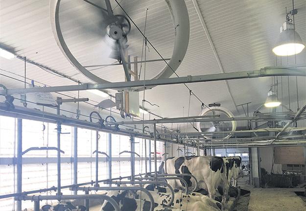 Les ventilateurs de recirculation permettent de projeter le vent directement où se trouvent les vaches. Photos: Gracieuseté de Steve Adam