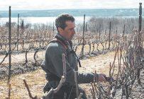Le président du Conseil des vins du Québec, Louis Denault, est soulagé que l'accès direct aux épiceries soit maintenu. Photo : Vignoble Sainte-Pétronille