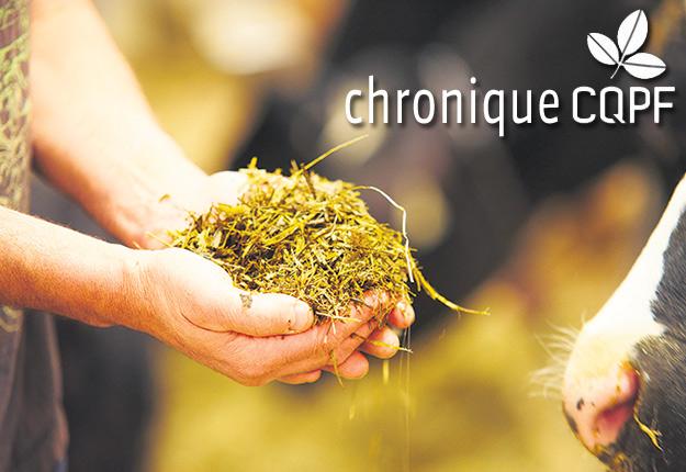 Il existe une grande variété d'additifs qui peuvent aider à améliorer la qualité du fourrage pendant la récolte et le stockage.