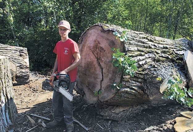 Billy Villemure se spécialise dans le commerce des tranches d'arbre provenant d'arbres géants. Photos: Martin Ménard/TCN