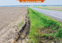 La bande tampon d'unmètre qui doit être aménagée le long des fossés n'est pas souvent respectée dans nos campagnes. Photo : Martin Ménard/Archives TCN