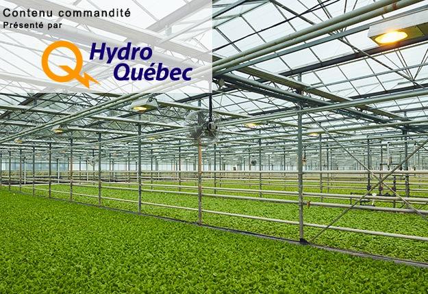Photos : Hydro-Québec