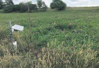 À l'été2020, 18outils d'aide à la décision en irrigation ont été évalués dans différents contextes de production. Photo : Gracieusetéde l'IRDA