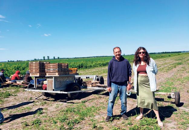 Simon Lavallée et Mathilde St-Jean Lavallée sont étonnés des bons rendements obtenus cette année, malgré le manque d'eau. Photo : La Sublime Asperge