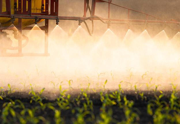 Si les ventes de pesticides ont légèrement augmenté en 2019 comparativement à 2018, les indices de risque sur l'environnement et sur la santé ont tous deux diminué. Photo : Shutterstock