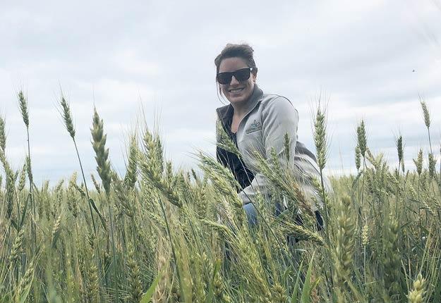 Laurianne Levert-Gauthier assure que la majorité des agriculteurs présents dans le bassin versant du lac Boivin posent des gestes pour diminuer l'utilisation de pesticides et d'engrais. À cet égard, la culture du blé d'automne, qui possède plusieurs vertus environnementales, est encouragée et subventionnée par la Ville de Granby. Photo : Gracieuseté de Laurianne Levert-Gauthier