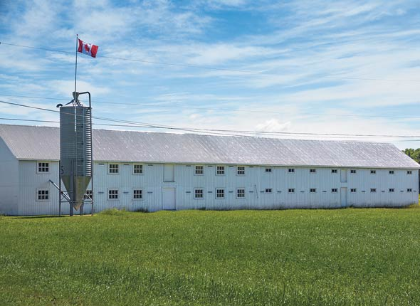 Bâtiment d'élevage de dindons à Saint-Gabriel-de-Valcartier.