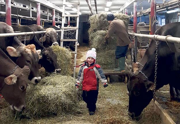 La petite Léa Véronneau adorait s'impliquer dans les tâches de la ferme pour aider ses parents. Photo : Gracieuseté de Sandra St-Amour